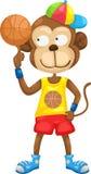 Monkey vector Stock Photos