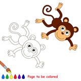 Monkey in vector cartoon to be colored. Stock Images
