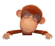 The monkey wearing spectacles reads Stock Photography