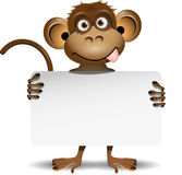 Monkey with a white background Stock Photo