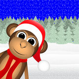 Monkey in winter forest Christmas Stock Images