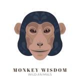 Monkey wisdom Royalty Free Stock Images