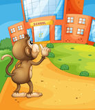 A monkey wondering in front of the school Royalty Free Stock Image