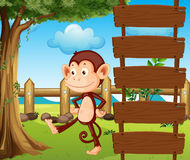 A monkey beside a wooden signage Stock Images