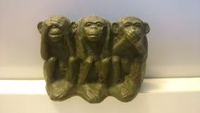 Monkey. World famous monkey Royalty Free Stock Image