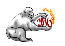 Monkey year Stock Images