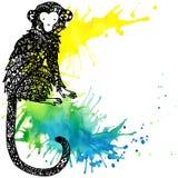 Monkey Year. Monkey graphics. watercolor firework texture illustration. Royalty Free Stock Image