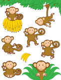 Monkeying around. Cute vector monkeys, individually grouped and easy to move around Royalty Free Stock Images