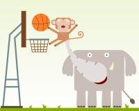 Monkeying the basket Stock Photography