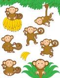 Monkeying rond vector illustratie