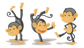 Monkeys. An illustration of three monkeys performing Royalty Free Stock Photo