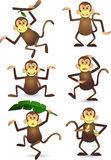 Monkeys action Royalty Free Stock Images