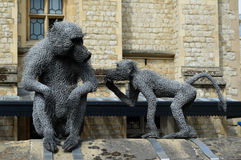 Monkeys of the Tower of London Royalty Free Stock Photo