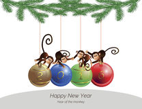 Monkeys on balls Stock Image