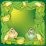 Monkeys and bananas Royalty Free Stock Images