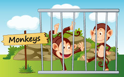 Monkeys in cage. Illustration of a monkeys in cage and wooden board Stock Photos