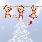 Monkeys celebrate Christmas Stock Image