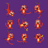 Monkeys in Different Poses, Vector Illustrations Royalty Free Stock Photos
