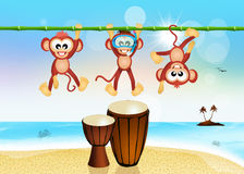 Monkeys and drums on the beach Stock Photography