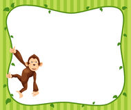 Monkeys frame  Royalty Free Stock Photos
