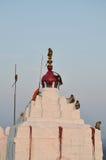 Monkeys in Hanuman Temple, Hampi, Karnataka, India Royalty Free Stock Photo
