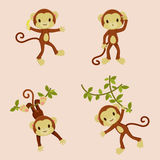 Monkeys icons set. Playful monkeys. Four isolated icons. Vector illustration Royalty Free Stock Photo
