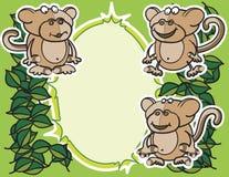 Monkeys la priorità bassa Immagini Stock Libere da Diritti