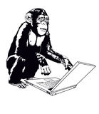 Monkeys and laptop Stock Image