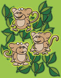 Monkeys and leaves Stock Image