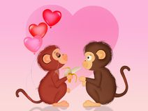 Monkeys in love Royalty Free Stock Photography