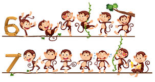 Monkeys and number six and seven Stock Image