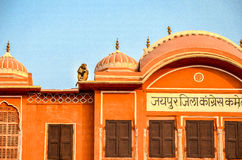 The monkeys of Pink City, Jaipur, Rajasthan, India. Rooftop-roaming monkey in the Jaipur Old Town Stock Images