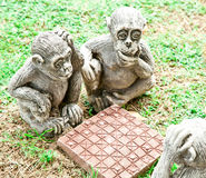 Monkeys playing checkers Stock Image