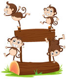 Monkeys playing with the empty signboard Royalty Free Stock Photography