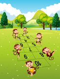 Monkeys playing hopscotch in park Stock Images