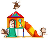 Monkeys playing at the playground Royalty Free Stock Image