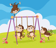 Monkeys playing on swing Royalty Free Stock Image