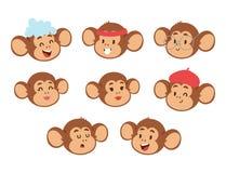 Monkeys rare animal vector cartoon macaque head like people nature primate character wild zoo ape chimpanzee. Illustration. Wildlife jungle monkey animal Royalty Free Stock Photos