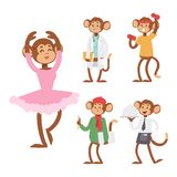 Monkeys rare animal vector cartoon macaque like people nature primate character wild zoo ape chimpanzee illustration. Wildlife jungle monkey animal Stock Photography