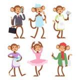 Monkeys rare animal vector cartoon macaque like people nature primate character wild zoo ape chimpanzee illustration. Wildlife jungle monkey animal Royalty Free Stock Photo