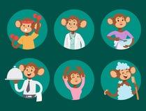Monkeys rare animal vector cartoon macaque like people nature primate character wild zoo ape chimpanzee illustration. Wildlife jungle monkey animal Stock Photo