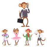 Monkeys rare animal vector cartoon macaque like people nature primate character wild zoo ape chimpanzee illustration. Wildlife jungle monkey animal Stock Photos