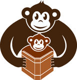 Monkeys reading book. Illustration art of a monkeys reading book with isolated background Stock Photo