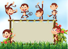 Monkeys and sign Royalty Free Stock Photo
