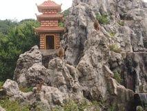 Monkeys sit on the mountain. Monkeys sit on the sacred mountain overlooking a pagoda Stock Image