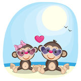 Monkeys in sunglasses Royalty Free Stock Photos