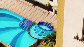 Monkeys swimming in pool, super monkey swimming in water, monkey natural swimmer.  stock video
