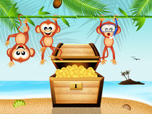 Monkeys with treasure chest Royalty Free Stock Images