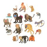 Monkeys types icons set, cartoon style. Monkeys types icons set. Cartoon illustration of 16 monkeys types vector icons for web Royalty Free Illustration