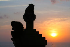 Monkeys at Uluwatu temple, Bali Indonesia. Silhouette monkeys at Uluwatu temple, Bali Indonesia Stock Photos
